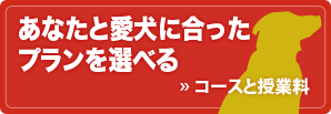 banner_course
