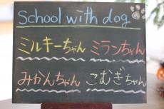 ★School with dog★ しつけ方教室開催しました♪