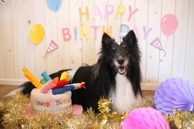 Happy Birthday★