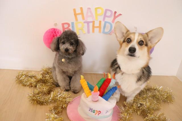 お誕生日おめでとう★