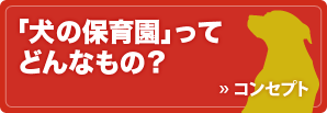 banner_concept