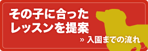 banner_flow
